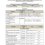 Naujas egzaminų tvarkaraštis-page-002