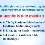 Karantinas_30_04